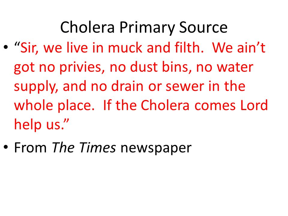 "Cholera Primary Source ""Sir, we live in muck and filth. We ain't got no privies, no dust bins, no water supply, and no drain or sewer in the whole pla"