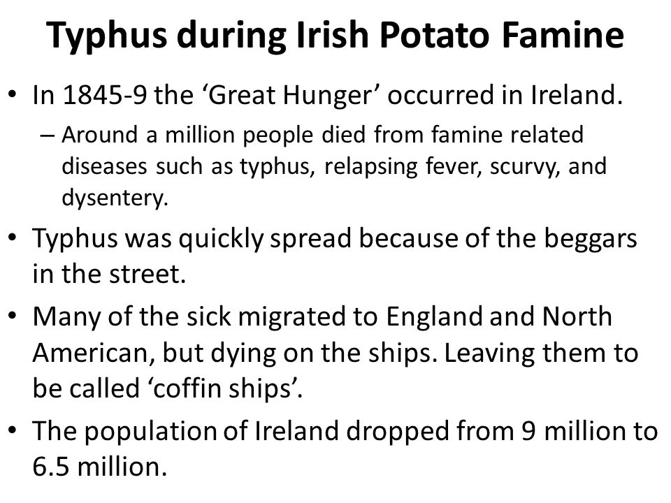 Typhus during Irish Potato Famine In 1845-9 the 'Great Hunger' occurred in Ireland. – Around a million people died from famine related diseases such a