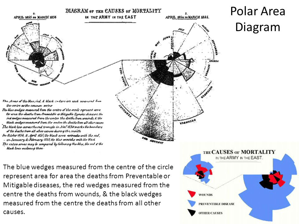 Polar Area Diagram The blue wedges measured from the centre of the circle represent area for area the deaths from Preventable or Mitigable diseases, t