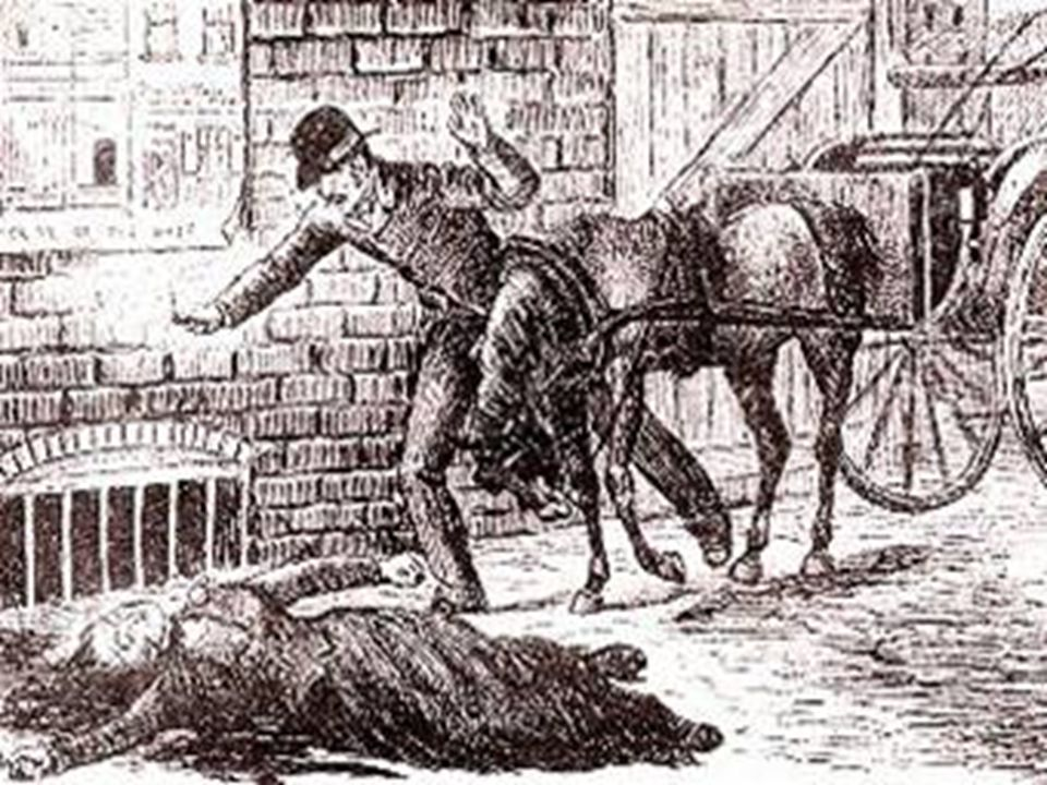 Louis Diemschutz was driving his cart to Dutfield Yard in Whitechapel on Sunday, September 30, 1888. As he did so, he saw an object on the ground near