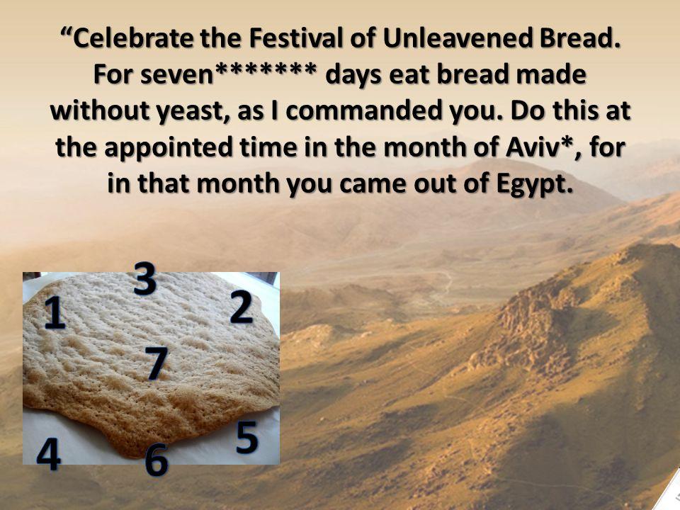 Celebrate the Festival of Unleavened Bread.
