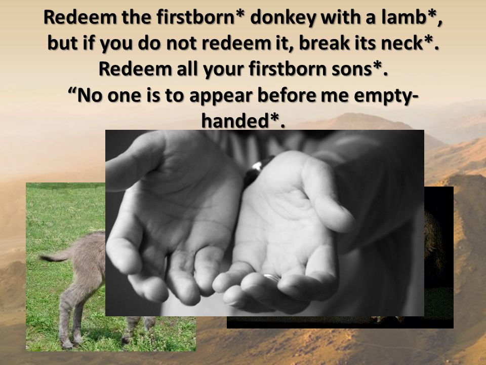 "Redeem the firstborn* donkey with a lamb*, but if you do not redeem it, break its neck*. Redeem all your firstborn sons*. ""No one is to appear before"