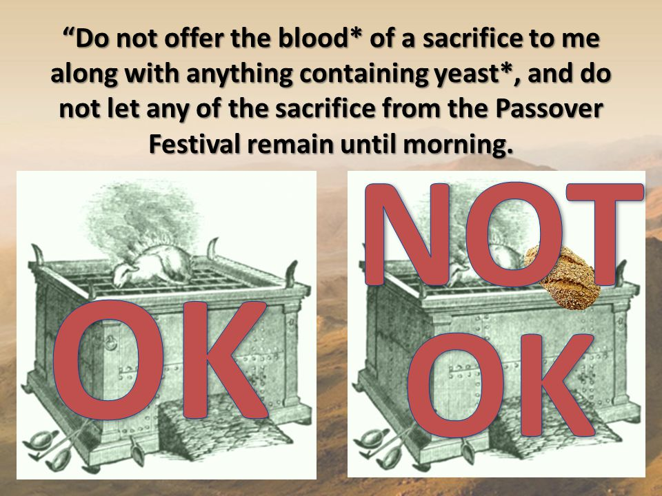 Do not offer the blood* of a sacrifice to me along with anything containing yeast*, and do not let any of the sacrifice from the Passover Festival remain until morning.