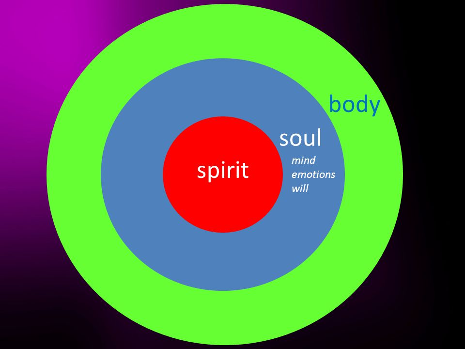 spirit soul body mind emotions will