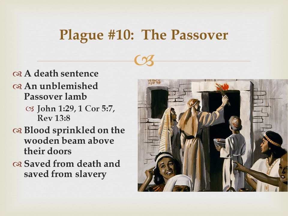   A death sentence  An unblemished Passover lamb  John 1:29, 1 Cor 5:7, Rev 13:8  Blood sprinkled on the wooden beam above their doors  Saved from death and saved from slavery Plague #10: The Passover