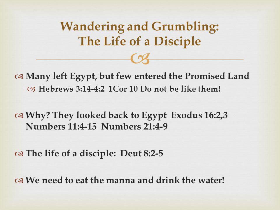   Many left Egypt, but few entered the Promised Land  Hebrews 3:14-4:2 1Cor 10 Do not be like them.