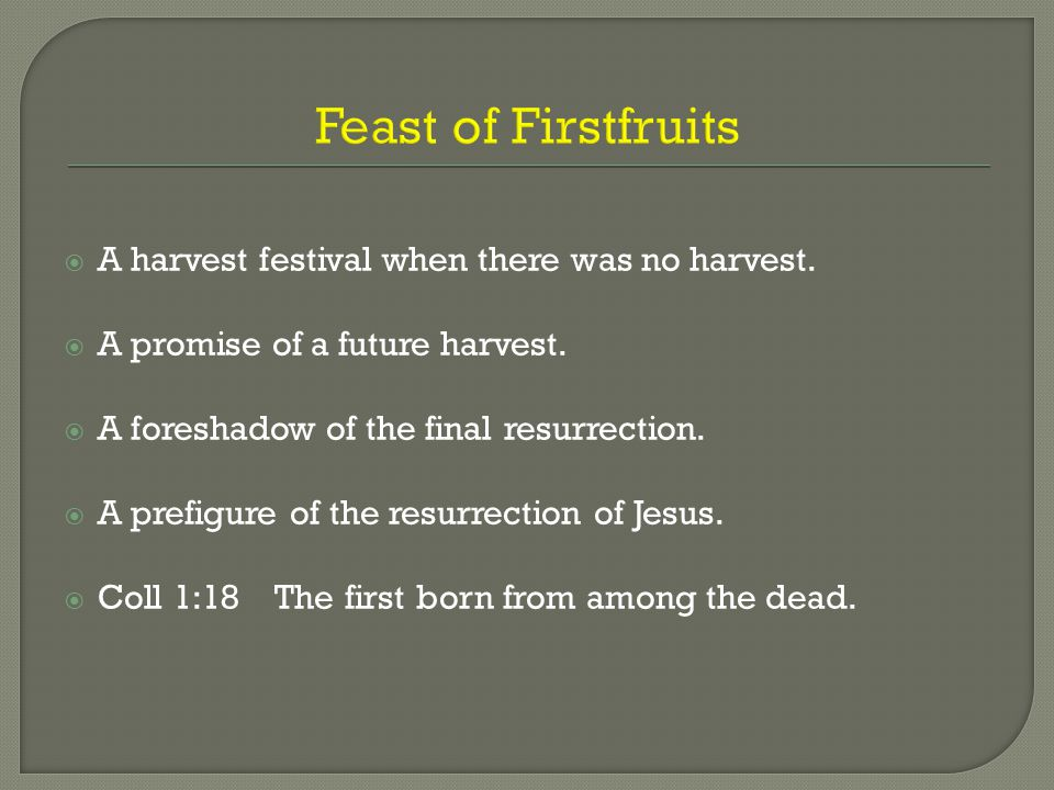 Feast of Firstfruits  A harvest festival when there was no harvest.