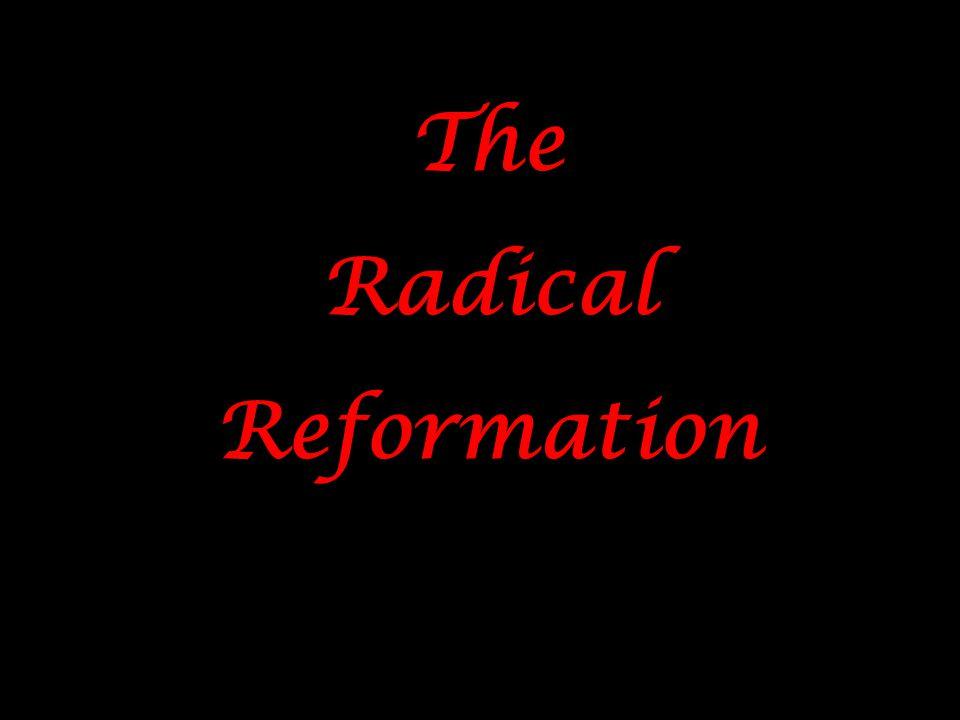 The Radical Reformation The Radical Reformation