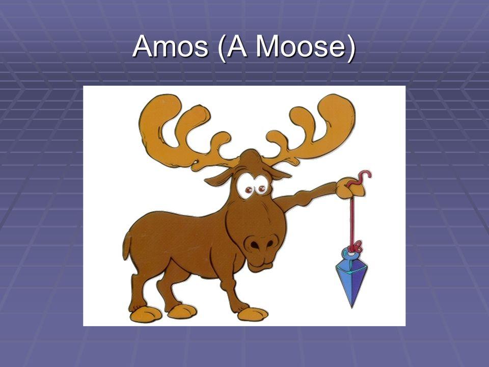 Amos (A Moose)