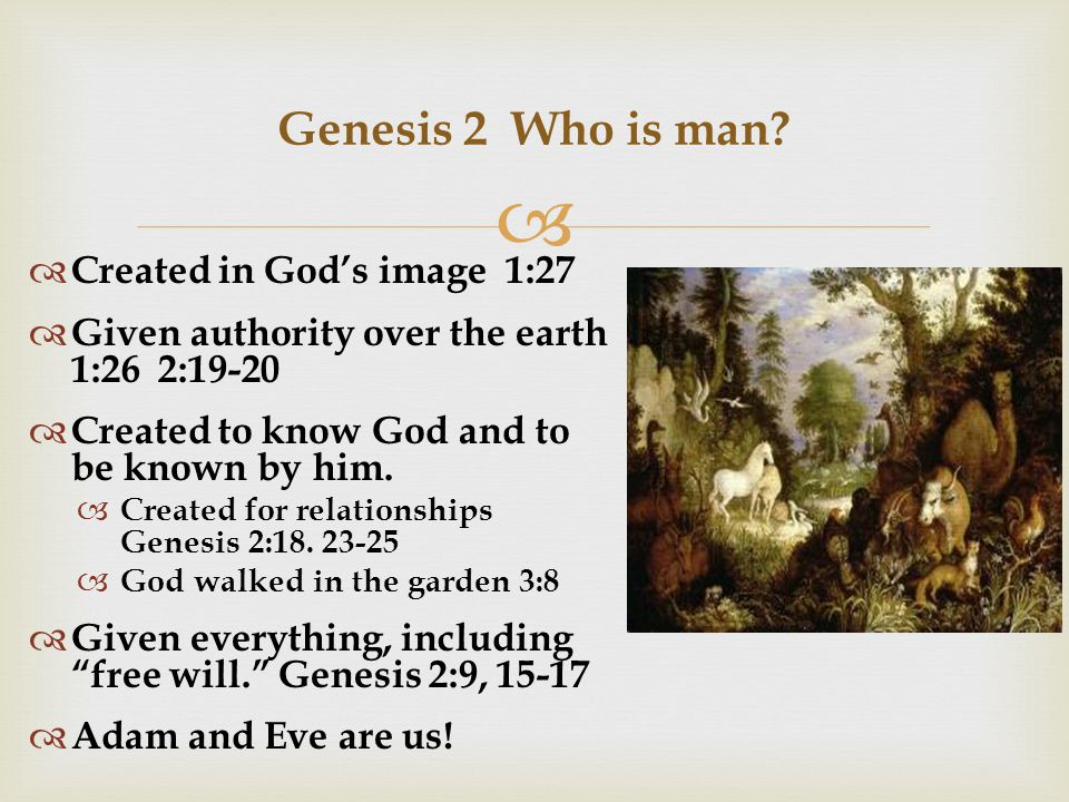  Genesis 2 Who is man.
