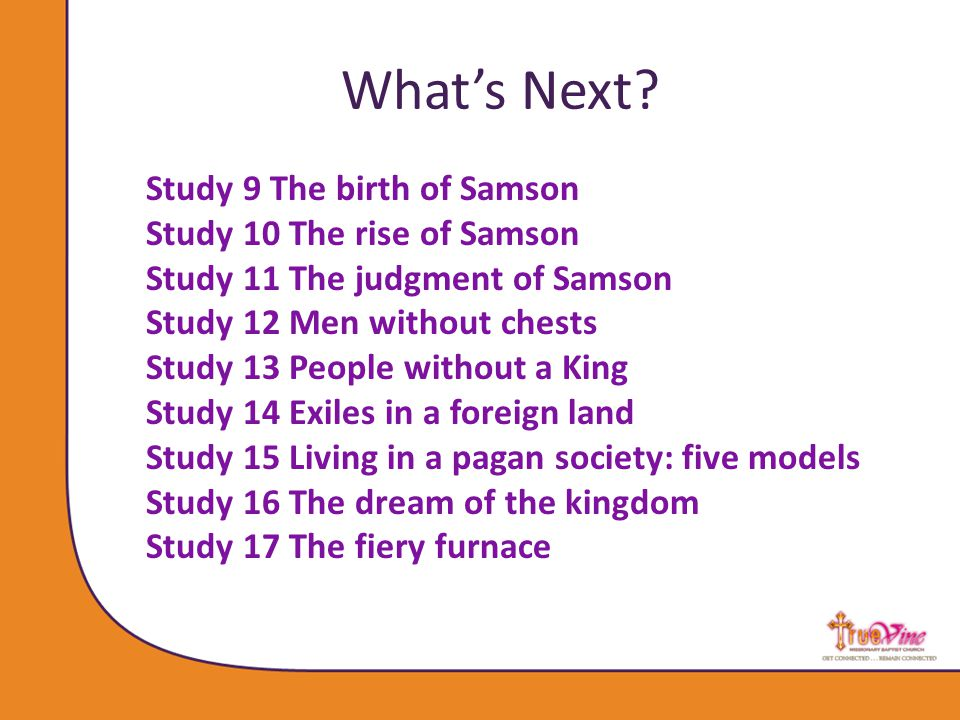 Study 9 The birth of Samson Study 10 The rise of Samson Study 11 The judgment of Samson Study 12 Men without chests Study 13 People without a King Study 14 Exiles in a foreign land Study 15 Living in a pagan society: five models Study 16 The dream of the kingdom Study 17 The fiery furnace What's Next