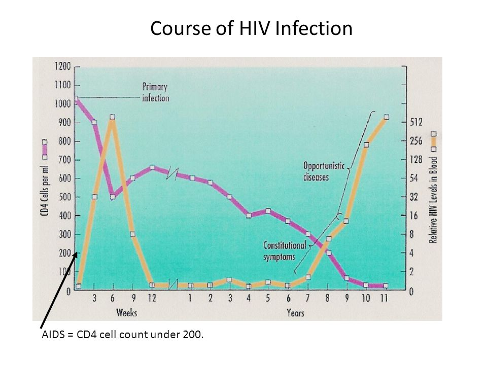 What is HIV and AIDS. HIV attacks lymphocytes (white blood cells) called T-cells.