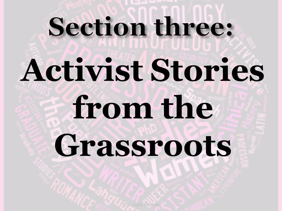 Activist Stories from the Grassroots © ~ Julie Shayne