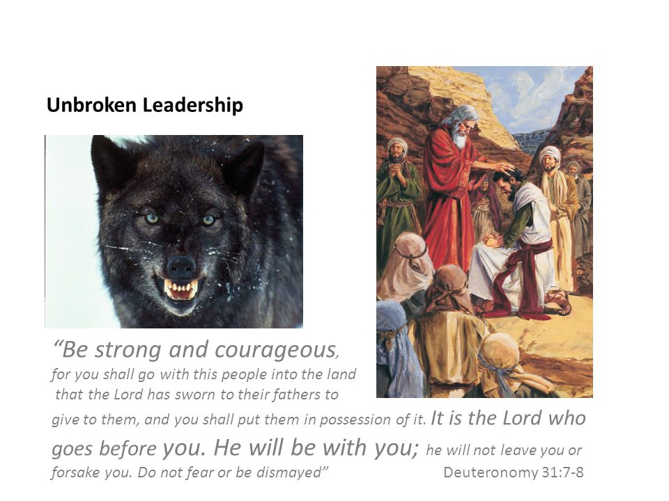 Unbroken Leadership Be strong and courageous, for you shall go with this people into the land that the Lord has sworn to their fathers to give to them, and you shall put them in possession of it.