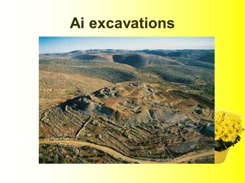 Ai excavations