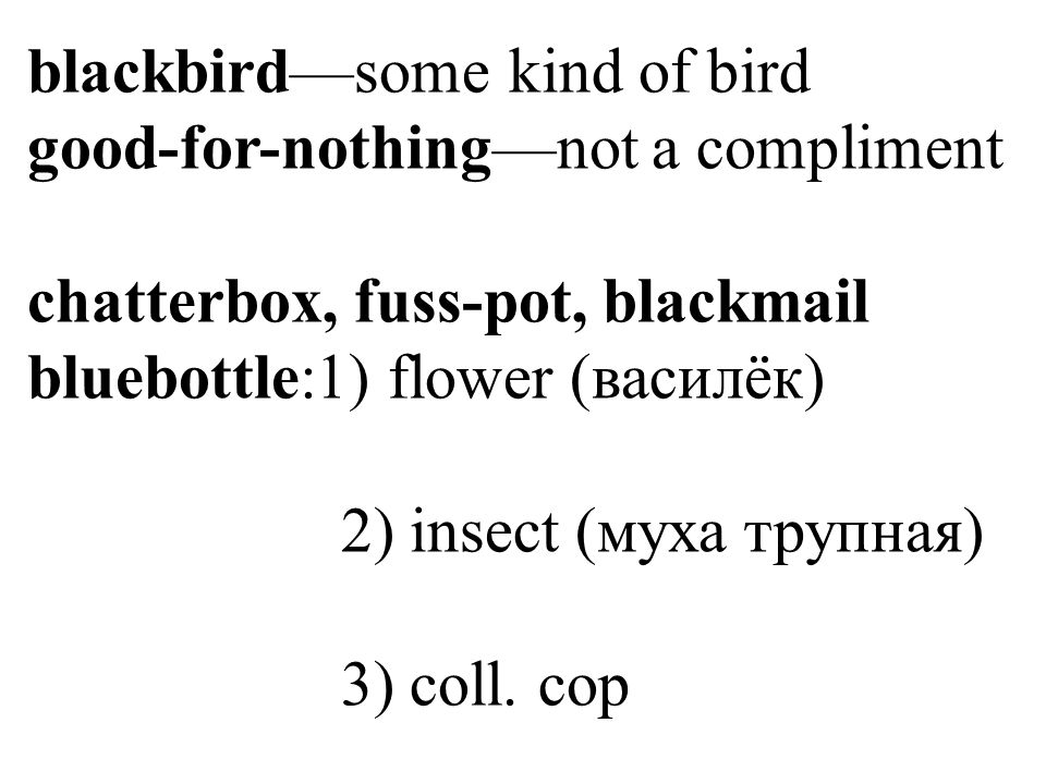 blackbird—some kind of bird good-for-nothing—not a compliment chatterbox, fuss-pot, blackmail bluebottle:1) flower (василёк) 2) insect (муха трупная) 3) coll.
