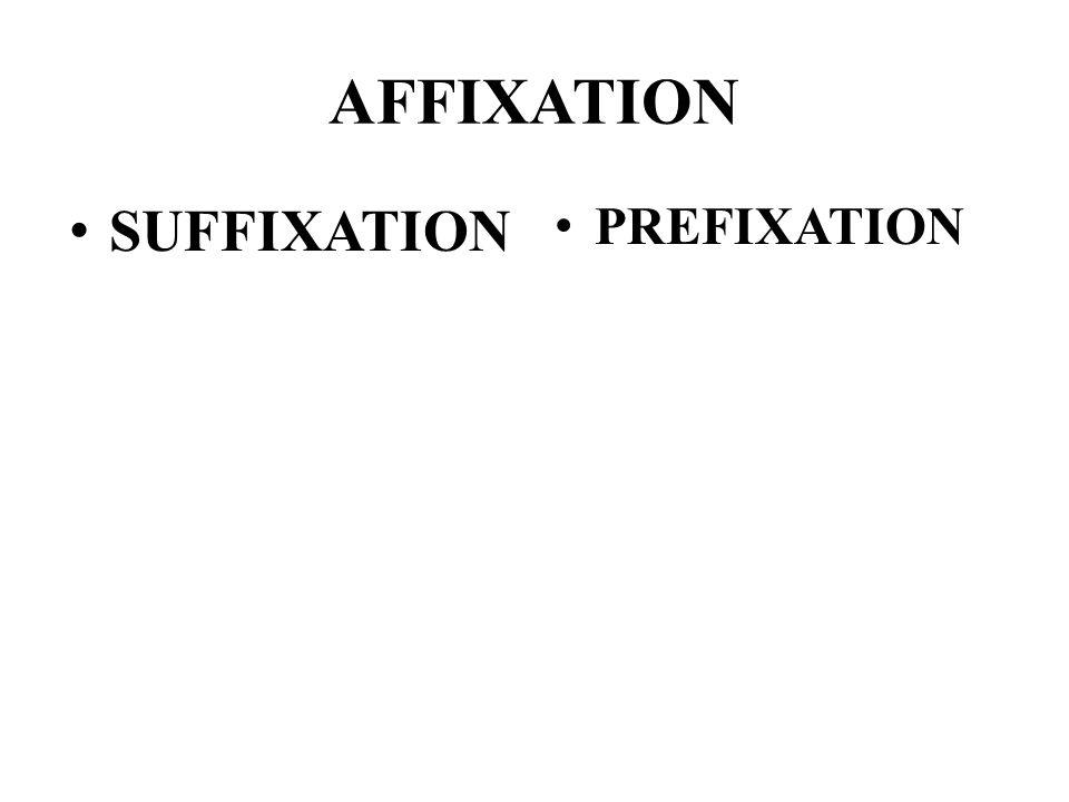 AFFIXATION SUFFIXATION PREFIXATION