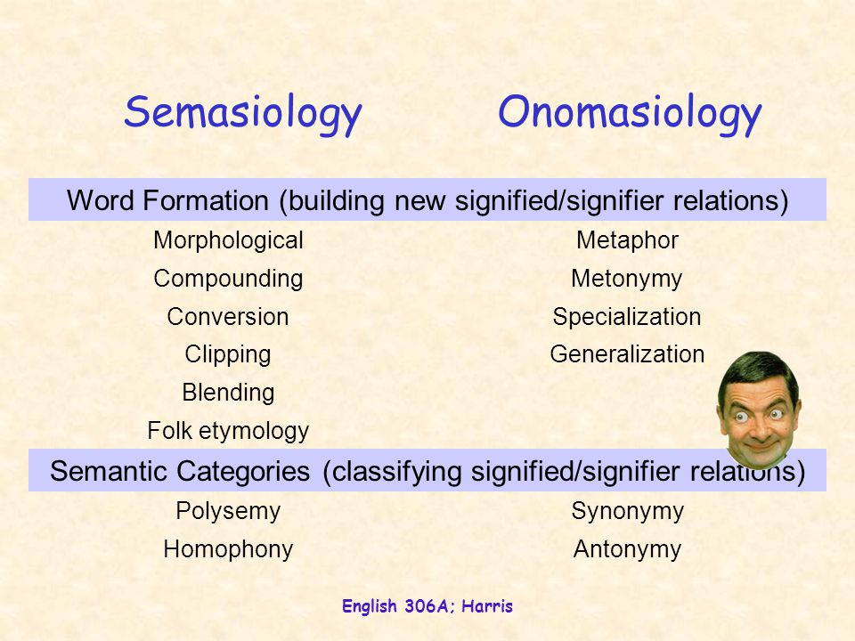 English 306A; Harris SemasiologyOnomasiology Word Formation (building new signified/signifier relations) MorphologicalMetaphor CompoundingMetonymy ConversionSpecialization ClippingGeneralization Blending Folk etymology Semantic Categories (classifying signified/signifier relations) PolysemySynonymy HomophonyAntonymy
