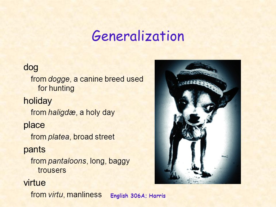 English 306A; Harris Generalization dog from dogge, a canine breed used for hunting holiday from haligdæ, a holy day place from platea, broad street pants from pantaloons, long, baggy trousers virtue from virtu, manliness