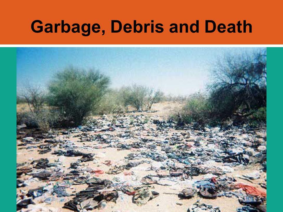 Garbage, Debris and Death