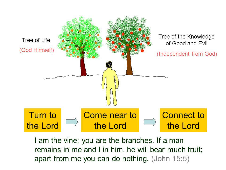 Connect to the Lord I am the vine; you are the branches. If a man remains in me and I in him, he will bear much fruit; apart from me you can do nothin