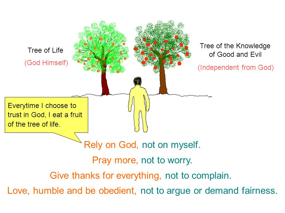 Everytime I choose to trust in God, I eat a fruit of the tree of life. (God Himself) (Independent from God) Tree of Life Tree of the Knowledge of Good