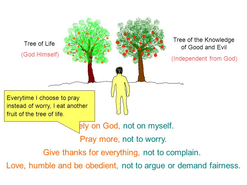 (God Himself) (Independent from God) Tree of Life Tree of the Knowledge of Good and Evil Rely on God, not on myself. Pray more, not to worry. Give tha