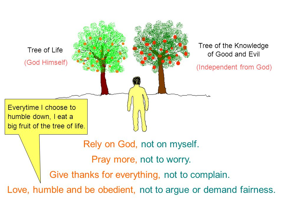 (God Himself) (Independent from God) Tree of Life Tree of the Knowledge of Good and Evil Rely on God, not on myself.