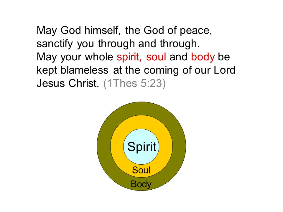 Body May God himself, the God of peace, sanctify you through and through. May your whole spirit, soul and body be kept blameless at the coming of our