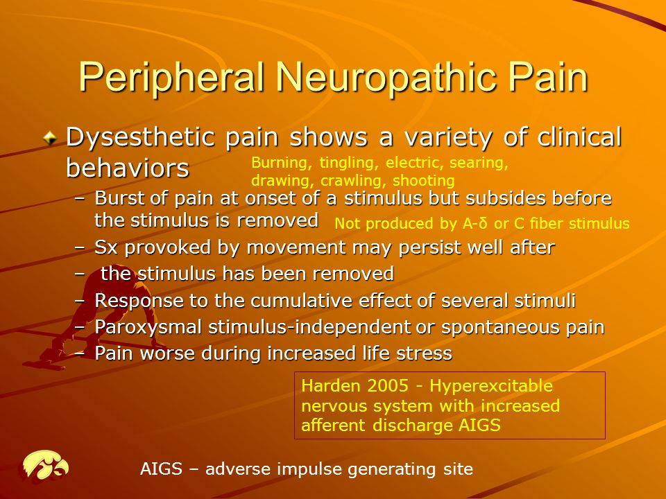 Peripheral Neuropathic Pain Dysesthetic pain shows a variety of clinical behaviors –Burst of pain at onset of a stimulus but subsides before the stimulus is removed –Sx provoked by movement may persist well after – the stimulus has been removed –Response to the cumulative effect of several stimuli –Paroxysmal stimulus-independent or spontaneous pain –Pain worse during increased life stress Harden 2005 - Hyperexcitable nervous system with increased afferent discharge AIGS Burning, tingling, electric, searing, drawing, crawling, shooting AIGS – adverse impulse generating site Not produced by A-δ or C fiber stimulus