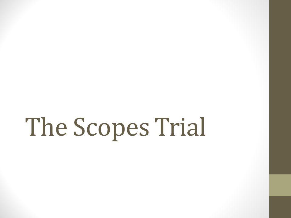 The Trial - Interpretation Bryan calls on a biblical text expert to testify.