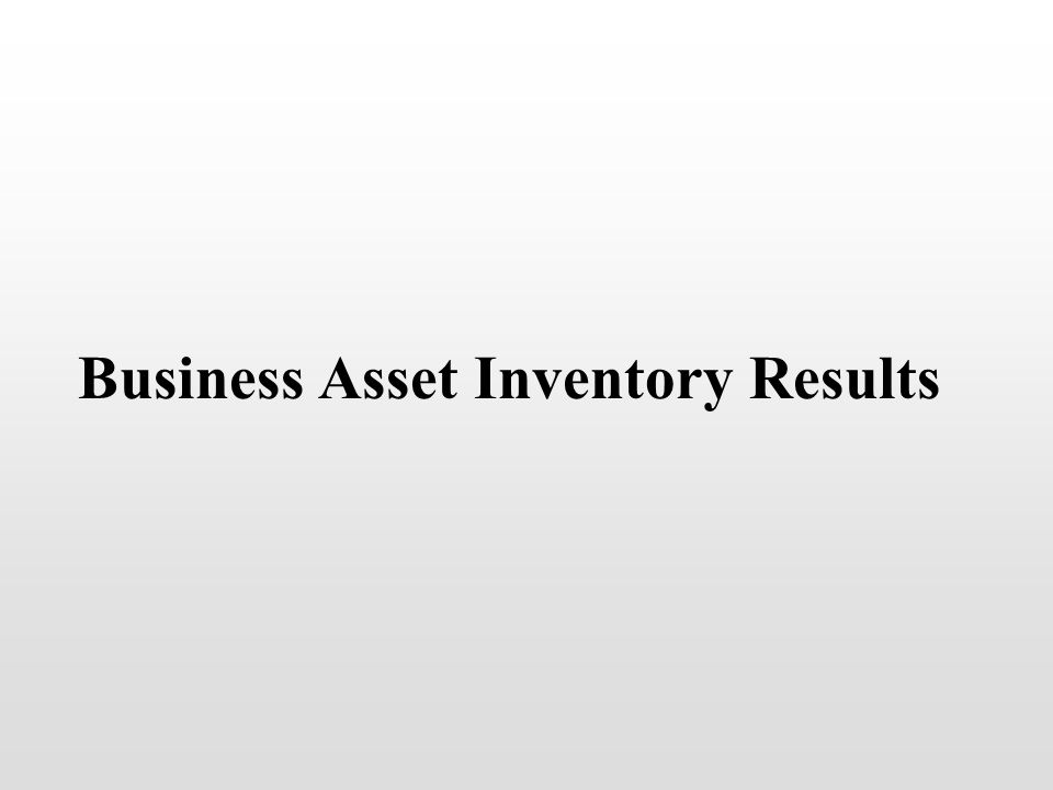 Business Asset Inventory Results