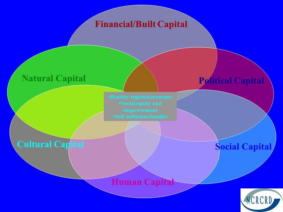 Political Capital Cultural Capital Natural Capital Human Capital Financial/Built Capital Social Capital Healthy regional economy Social equity and empowerment Self-sufficient families