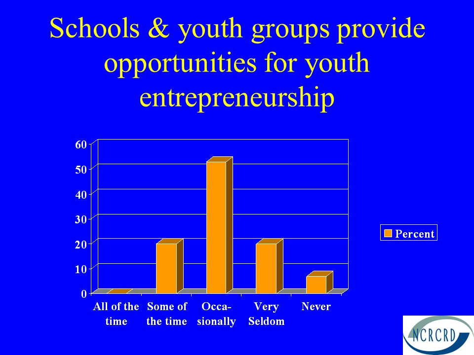 Schools & youth groups provide opportunities for youth entrepreneurship