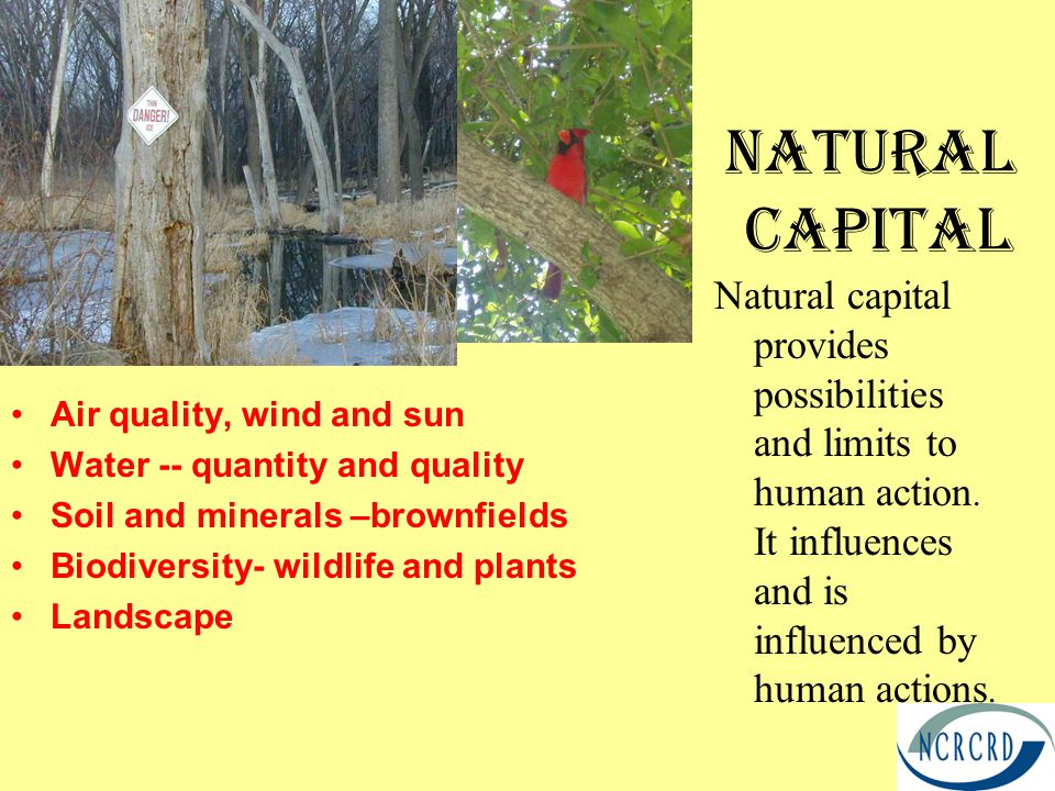 Natural Capital Air quality, wind and sun Water -- quantity and quality Soil and minerals –brownfields Biodiversity- wildlife and plants Landscape Natural capital provides possibilities and limits to human action.