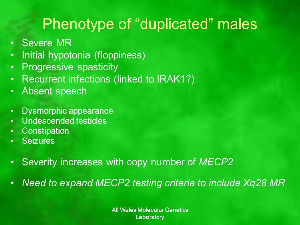 All Wales Molecular Genetics Laboratory Phenotype of duplicated males Severe MR Initial hypotonia (floppiness) Progressive spasticity Recurrent infections (linked to IRAK1 ) Absent speech Dysmorphic appearance Undescended testicles Constipation Seizures Severity increases with copy number of MECP2 Need to expand MECP2 testing criteria to include Xq28 MR