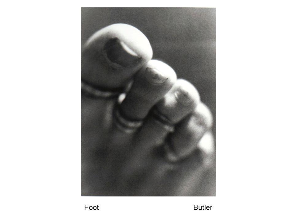 Hand Butler