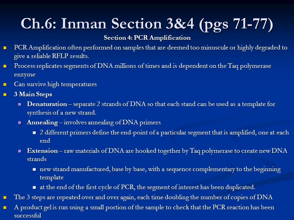 Ch.6: Inman Section 3&4 (pgs 71-77) Section 4: PCR Amplification PCR Amplification often performed on samples that are deemed too minuscule or highly degraded to give a reliable RFLP results.