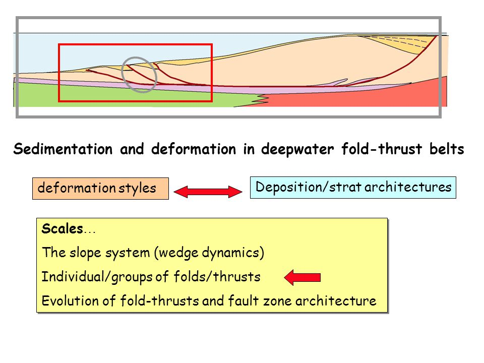 Sedimentation and deformation in deepwater fold-thrust belts Scales … The slope system (wedge dynamics) Individual/groups of folds/thrusts Evolution of fold-thrusts and fault zone architecture Scales … The slope system (wedge dynamics) Individual/groups of folds/thrusts Evolution of fold-thrusts and fault zone architecture deformation styles Deposition/strat architectures