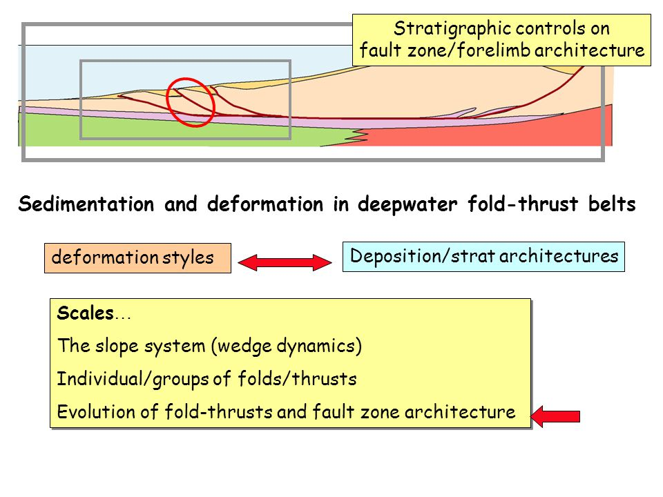 Sedimentation and deformation in deepwater fold-thrust belts Scales … The slope system (wedge dynamics) Individual/groups of folds/thrusts Evolution of fold-thrusts and fault zone architecture Scales … The slope system (wedge dynamics) Individual/groups of folds/thrusts Evolution of fold-thrusts and fault zone architecture deformation styles Deposition/strat architectures Stratigraphic controls on fault zone/forelimb architecture