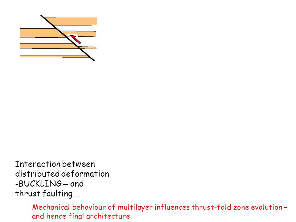 Interaction between distributed deformation -BUCKLING – and thrust faulting … Mechanical behaviour of multilayer influences thrust-fold zone evolution