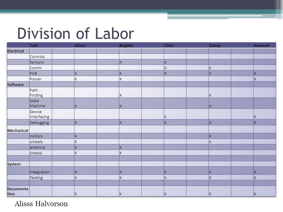 Division of Labor Alissa Halvorson