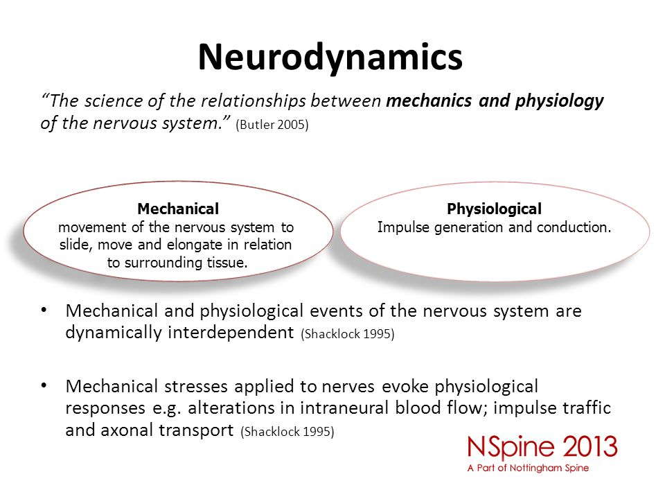 "Neurodynamics ""The science of the relationships between mechanics and physiology of the nervous system."" (Butler 2005) Mechanical and physiological ev"