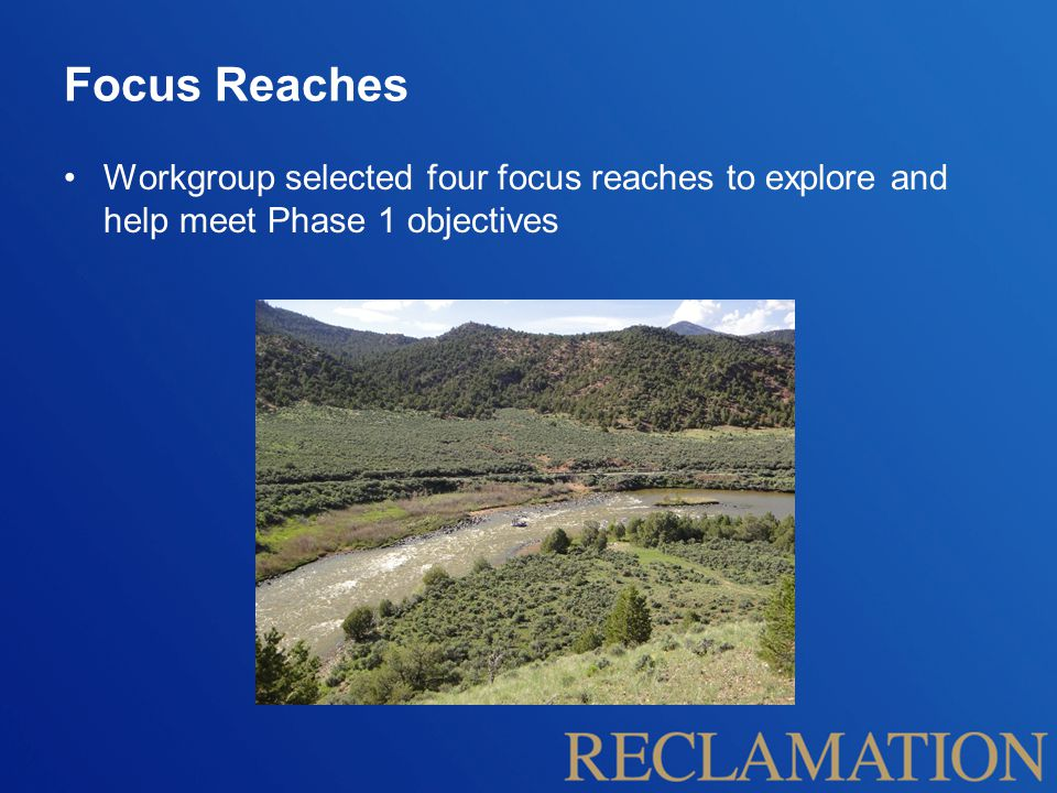Focus Reaches Workgroup selected four focus reaches to explore and help meet Phase 1 objectives