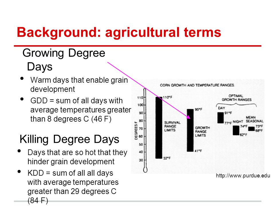 Killing Degree Days Days that are so hot that they hinder grain development KDD = sum of all all days with average temperatures greater than 29 degrees C (84 F) Growing Degree Days Warm days that enable grain development GDD = sum of all days with average temperatures greater than 8 degrees C (46 F) Background: agricultural terms http://www.purdue.edu