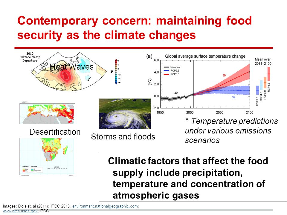Contemporary concern: maintaining food security as the climate changes Climatic factors that affect the food supply include precipitation, temperature and concentration of atmospheric gases Heat Waves Images: Dole et.