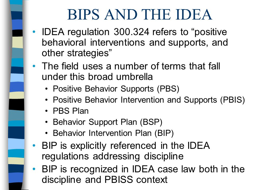 BIPS AND THE IDEA IDEA regulation 300.324 refers to positive behavioral interventions and supports, and other strategies The field uses a number of terms that fall under this broad umbrella Positive Behavior Supports (PBS) Positive Behavior Intervention and Supports (PBIS) PBS Plan Behavior Support Plan (BSP) Behavior Intervention Plan (BIP) BIP is explicitly referenced in the IDEA regulations addressing discipline BIP is recognized in IDEA case law both in the discipline and PBISS context