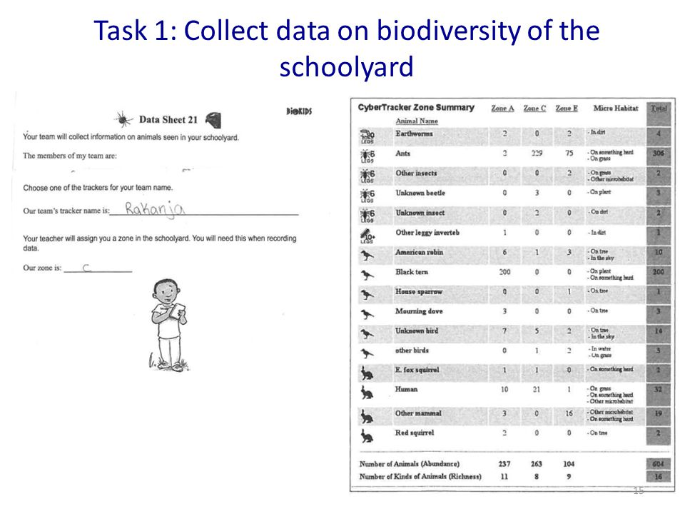 Task 1: Collect data on biodiversity of the schoolyard 15