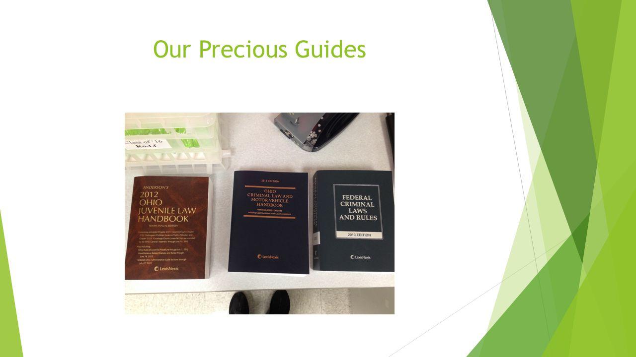 Our Precious Guides