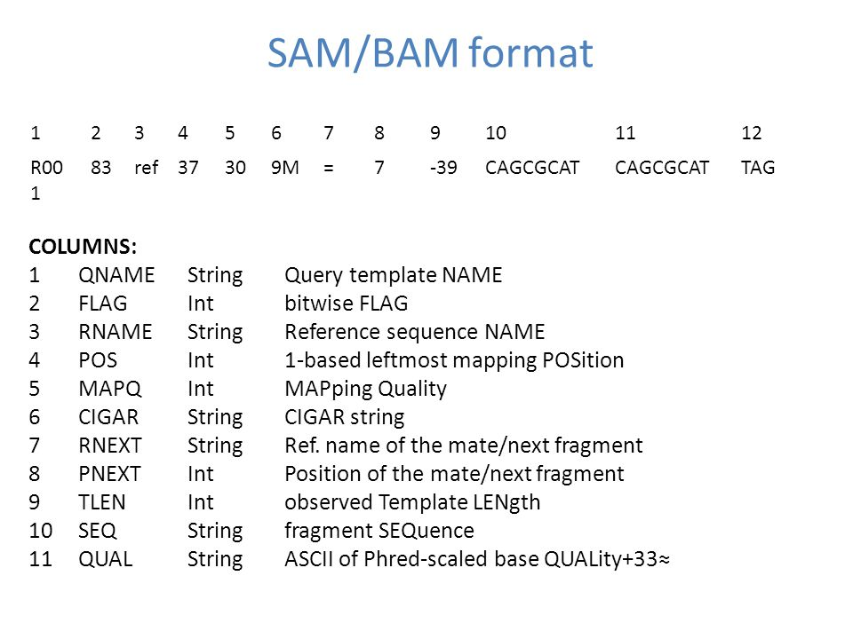 SAM/BAM format COLUMNS: 1QNAMEStringQuery template NAME 2FLAGIntbitwise FLAG 3RNAMEStringReference sequence NAME 4POSInt1-based leftmost mapping POSition 5MAPQIntMAPping Quality 6CIGAR StringCIGAR string 7RNEXTStringRef.